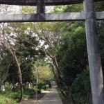 江田神社の参道
