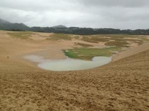 鳥取砂丘に出来た池